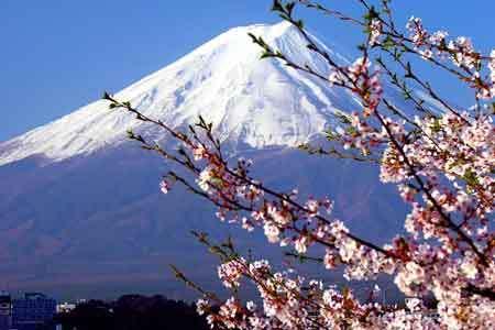 冬日享雪:日本富士山神秘浪漫之旅组图