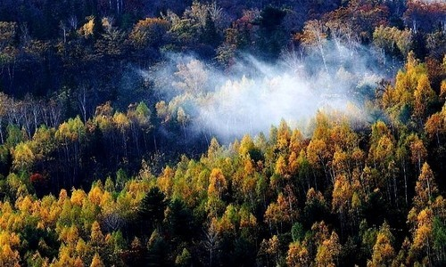 南山   南山森林公园位于伊春区南山风景林自然保护区内,占地35平方