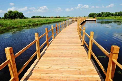 黑瞎子岛湿地公园(资料图)
