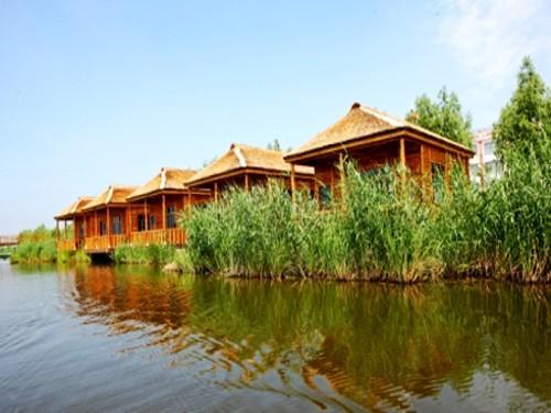 浪漫 湿地/金河湾湿地植物园