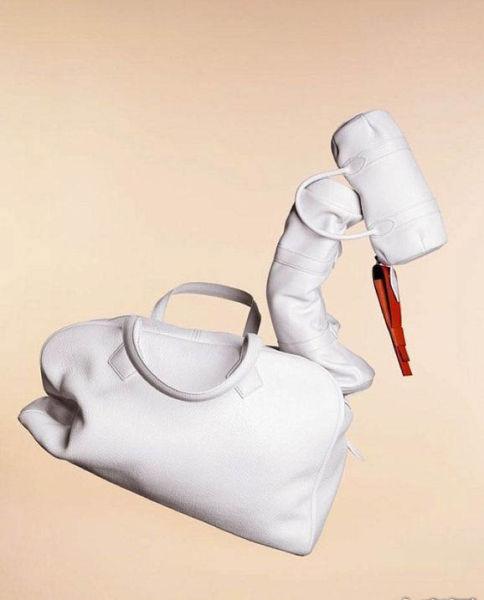爱马仕包袋动物系列――天鹅