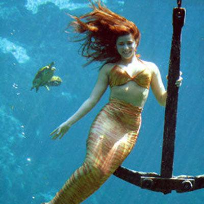 佛罗里达州美人鱼