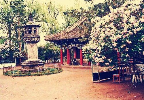 上京龙泉府