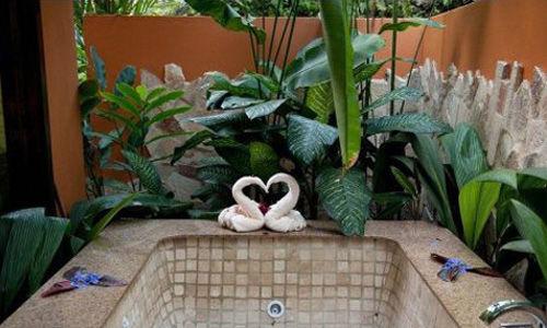 阿纳雷尔・纳亚拉花园酒店