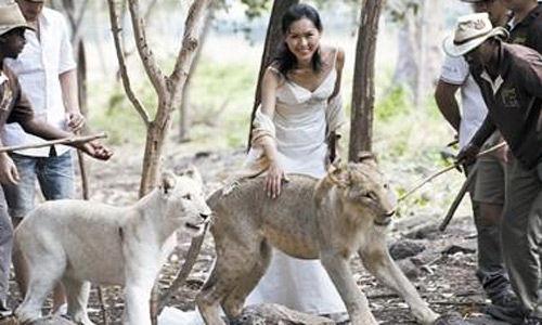 去非洲的动物园,最好的一点便是可以与动物亲密接触