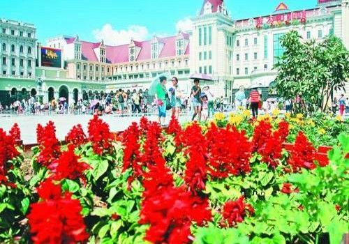 建筑艺术广场鲜花盛开