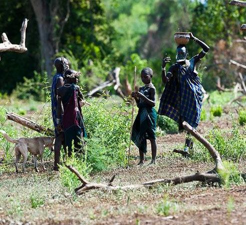 埃塞俄比亚南部