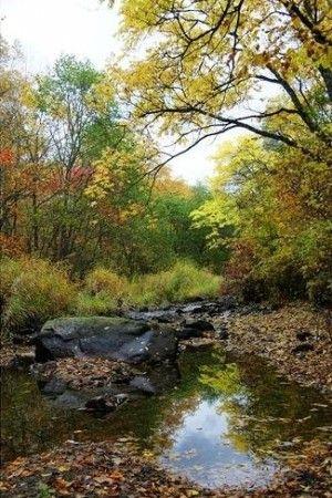 茅兰沟森林公园景观