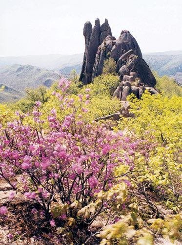 牡丹江三道关森林公园