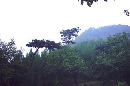 大庆松林公园