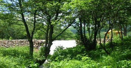 绥芬河森林公园