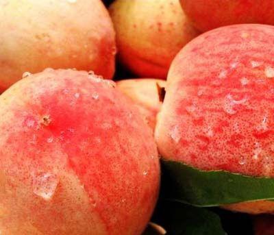 吃水果禁忌之水蜜桃篇