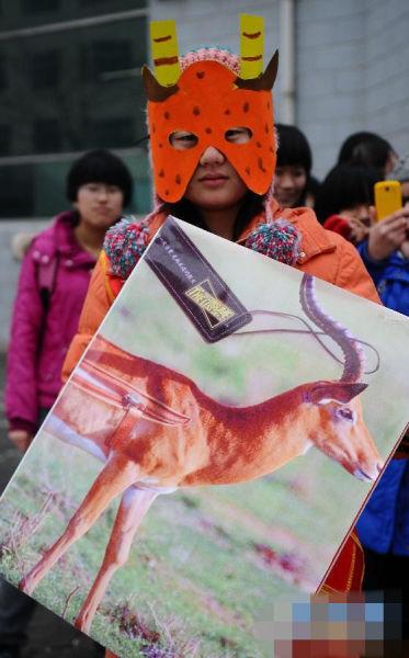 大学生扮动物 呼吁保护野生动物
