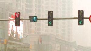 提前8秒绿灯突然变黄灯 小心晃个跟斗
