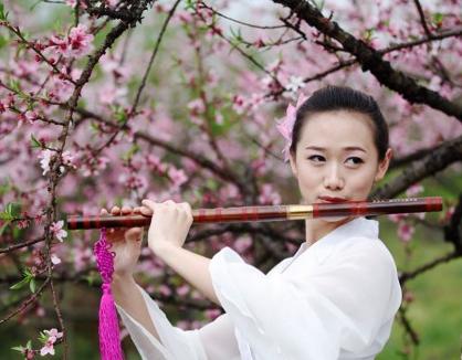 """2000多亩盛开的桃花让白廊乡变成了""""桃花岛"""",2013中国东江湖(白廊)"""