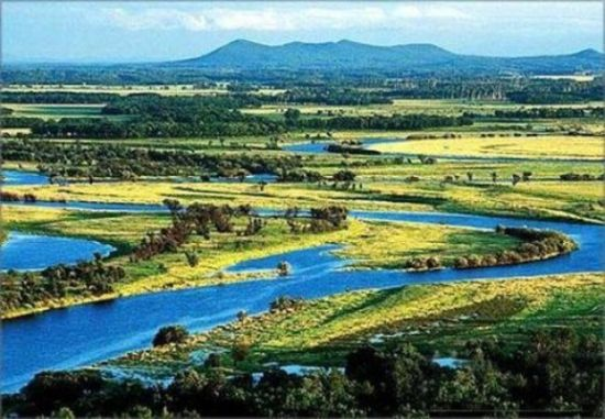 三江自然保护区   三江自然保护区位于黑龙江省抚远县和同江市境内,总面积198089公顷,其中核心区5.6万公顷,保护区于1994年经黑龙江省人民政府批准建立,是一个以沼泽湿地为主要保护对象地自然保护区。   本区地处黑龙江与乌苏里江汇流的三角地带,属低冲积平原沼泽湿地,为三江平原东端受人为干扰最小的湿地生态系统的典型代表,也是全球少见的淡沼泽湿地之一。区内泡沼遍布,河流纵横,自然植被以沼泽化草甸为主,并间有岛状森林分布,均保持着原始自然状态。保护区内动植物资源丰富,共有脊椎动物291种,其中国家一级