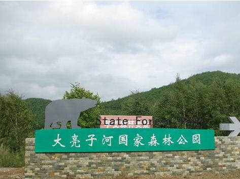 汤原大亮子河国家森林公园