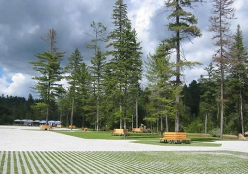细数伊春八大森林公园 白领一族的最爱