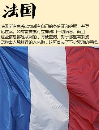 魔尺72段法国大龙虾步骤图