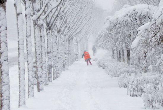 阿城区自11月16日晚开始,连续两天降暴雪,雪量之大,历史罕见。到19日8时30分,降雪量已达32.3毫米,雪深达30厘米,突破该区1963年20.7毫米的历史极值,为50年来最强降雪。   阿城区委、区政府高度重视清冰雪工作,针对此次强降雪,抢前抓早、提前筹备,于14日召开全区清冰雪工作动员大会,成立阿城区清冰雪工作领导小组,启动了抗击特大风雪应急预案。阿城区委书记王文力、区长王铁立亲自部署并督导清冰雪工作,多次亲临清冰雪现场指导工作和慰问清冰雪一线的干部、职工,要求在清冰雪工作中牢固树立绿色清冰