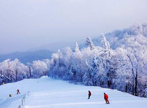 亚布力滑雪场-哈尔滨四个高端上档次的5S级滑雪场