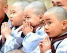 寺庙里萌人的童子僧