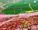 陕西12处国家级美丽田园