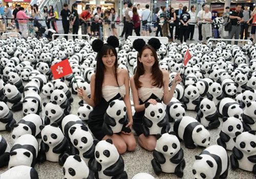 熊猫星人空降香港众星卖萌合影呼吁环保