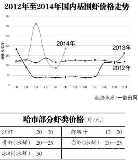 哈达批发市场海鲜部孟经理介绍,去年同期基围虾批发价格八九十元