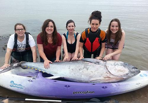 女生意外捡到价值700万蓝鳍金枪鱼(图)