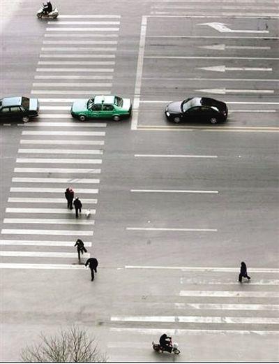 哈市首次启用高清摄像头全城抓拍行人机动车违章
