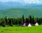 新疆六大最美草原实用旅游全攻略