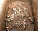 秦始皇祖母墓穴