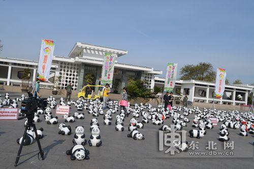 国庆节期间,太阳岛举办萌宝熊猫秀,趣图有奖征集,寻宝总动员,萌宝diy