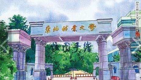 旅游配图:手绘东北林业大学 手绘者:ZJ_承熙手绘-匆匆那年 与TA
