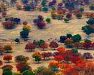 最美秋景全在这儿中国20大赏秋胜地