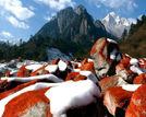 雪景梯田海边1月最值得去的8个美丽地方