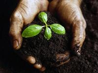 全国政协委员:水和土壤污染比空气污染更要关注