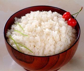 米饭动物造型图片