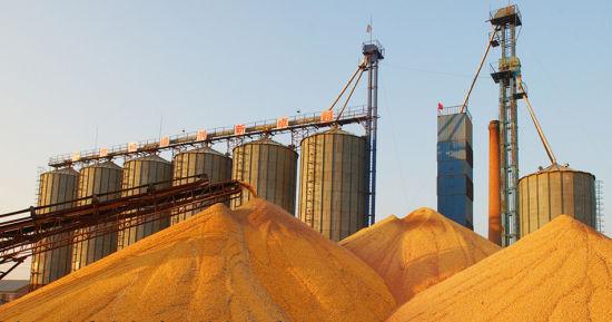 发展生态农业提高了粮食品质