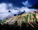 四月份的中国色到极致这些美景不可错过