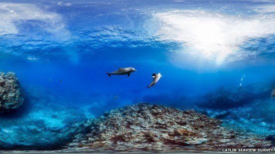 澳大利亚大堡礁加速衰亡