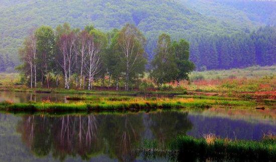 铁西森林公园是国家3A级景区。位于黑龙江省密山市太平乡北部的铁西林场内。方(正)虎(林)旅游公路或七(台河)密(山)旅游公路都可到达。距密山市区58.5公里。森林公园属山岳生态自然风景区。因山中古榛子繁茂独特而得名。森林公园总面积20平方公里。