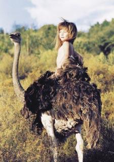 小野人女孩与动物的十年生活